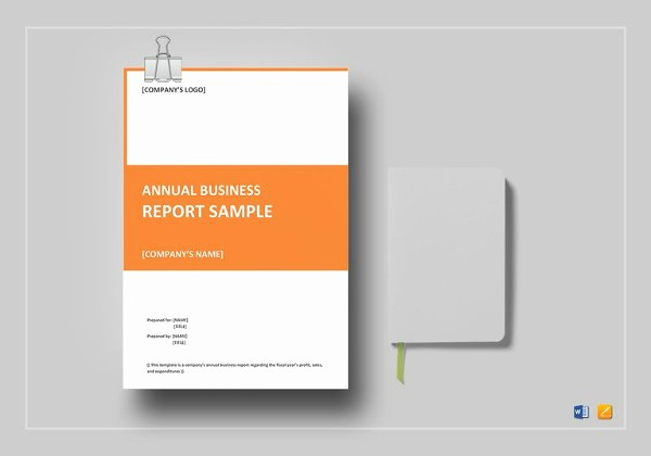 End Of Year Reports Templates Beautiful 18 End Of Year Report Templates Free Sample Example