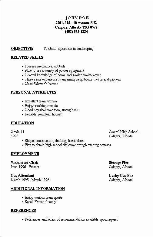 Example Of A Simple Resume New Basic Resume Outline Template