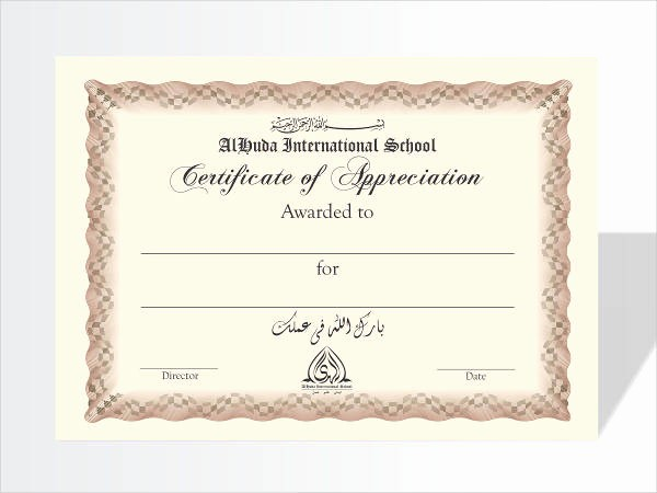 Example Of Certificate Of Appreciation Awesome 8 Certificate Of Appreciation Examples & Samples