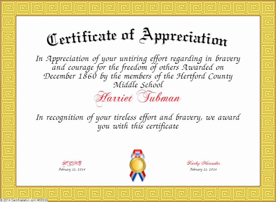 Example Of Certificate Of Appreciation Awesome Certificate Appreciation Wording