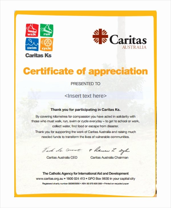 Example Of Certificate Of Appreciation Fresh 27 Certificate Of Appreciation Templates Pdf Doc