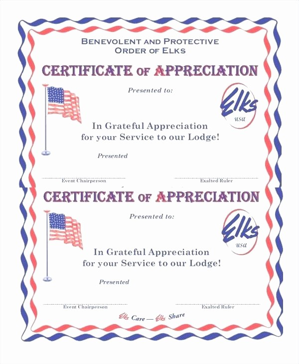 Example Of Certificate Of Appreciation Lovely Thank You Certificate Templates Template for Word New Army