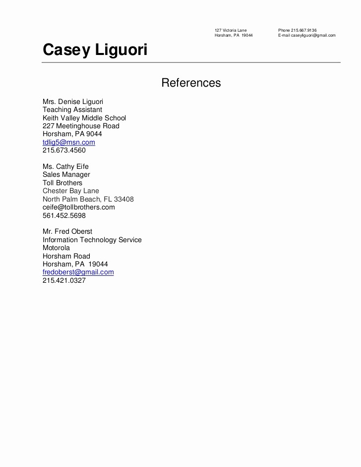 Example Of Professional Reference List Elegant Resume References Sample 2010
