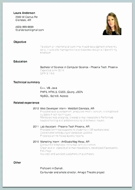 Example Of Simple Resume format Awesome Simple Example Resume Simple Resume Layouts Free