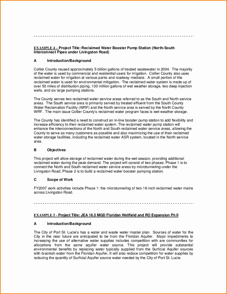 Example Of Statement Of Work Lovely 5 Example Statement Of Work