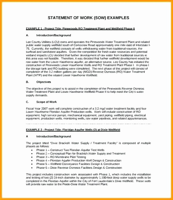 Example Of Statement Of Work New Scope Work Template Consulting Statement Example format