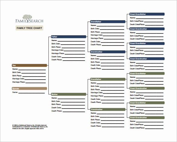 Excel Family Tree Template Free Awesome Family Tree Template Excel