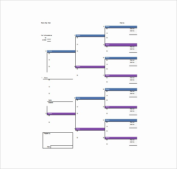 Excel Family Tree Template Free Fresh Family Tree Template 11 Free Word Excel format