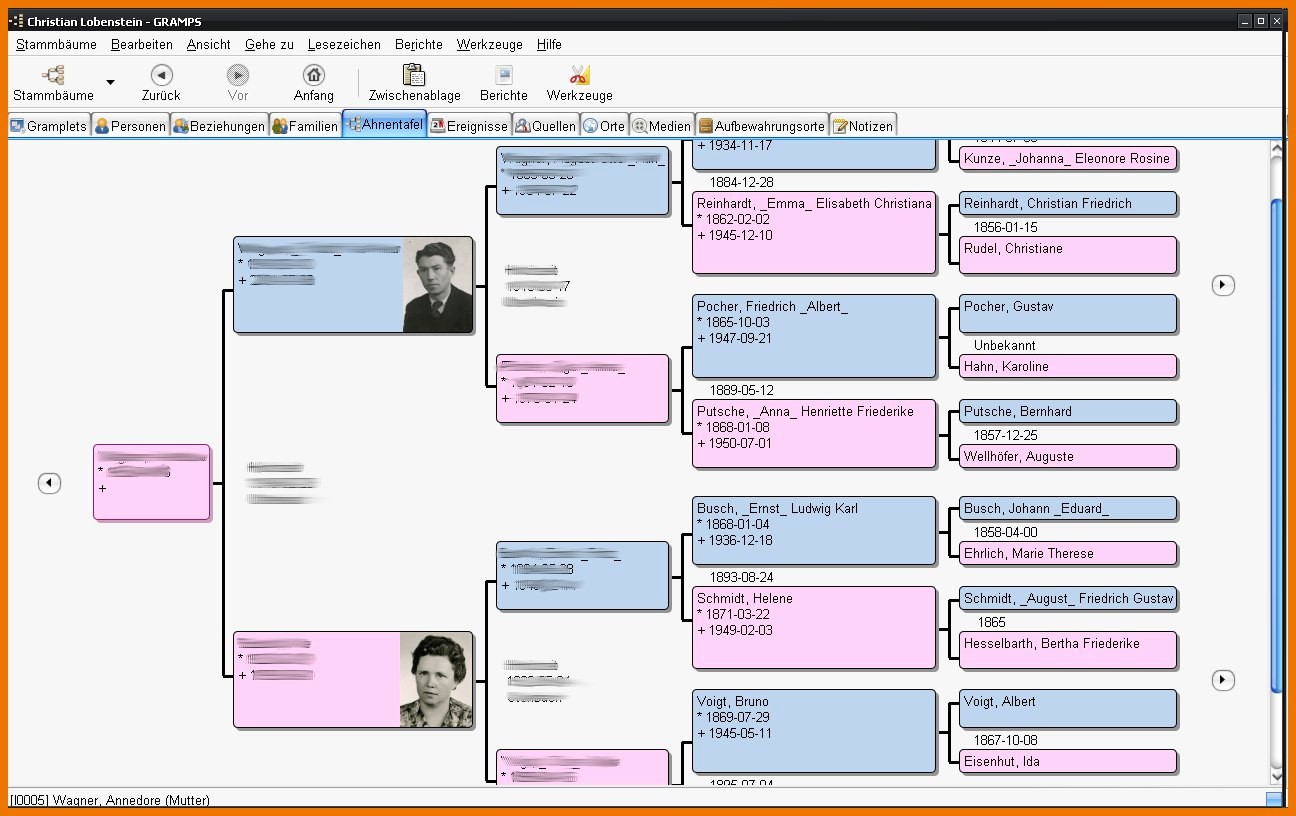 Excel Family Tree Template Free Fresh Kennedy Family Tree Example Family Tree Template Excel