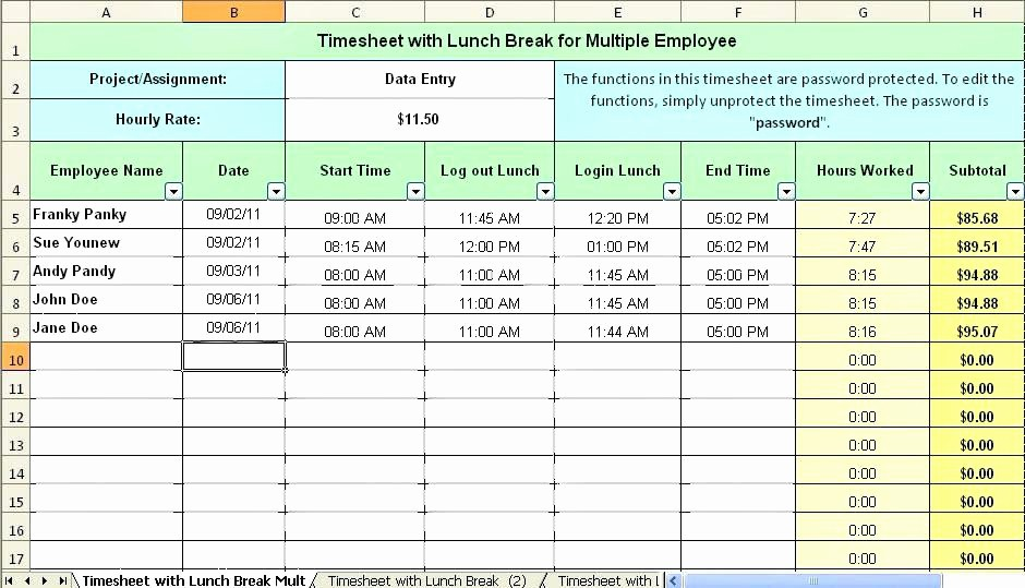 Excel Timesheet Template Multiple Employees Best Of Payroll Template Secure for Multiple Employees G Word Bi