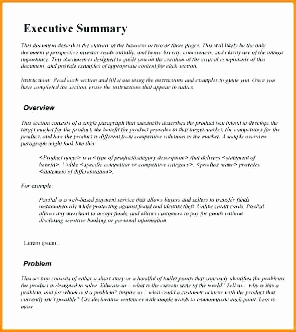 Executive Summary Financial Report Template Awesome Executive Summary formats Executive Executive Summary