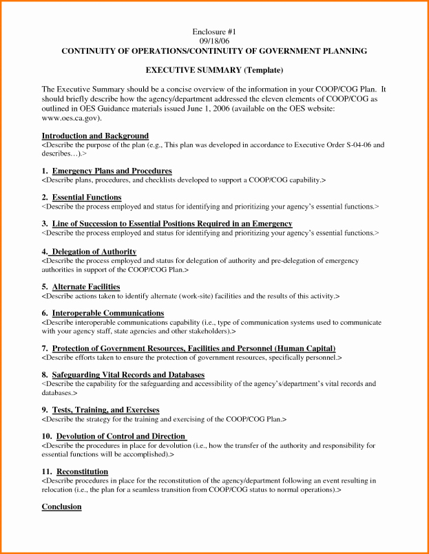 Executive Summary Financial Report Template Unique Executive Summary Template Word Example Mughals