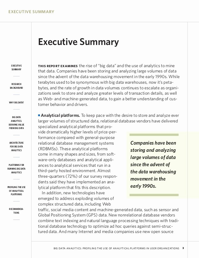 Executive Summary Of A Report Awesome Executive Summary Examples World Maps and Letter
