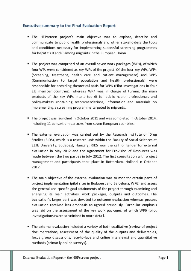 Executive Summary Of A Report Awesome Executive Summary to the Final Evaluation Report