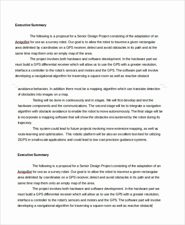 Executive Summary Report Example Template Best Of Executive Summary Template 8 Free Word Pdf Documents