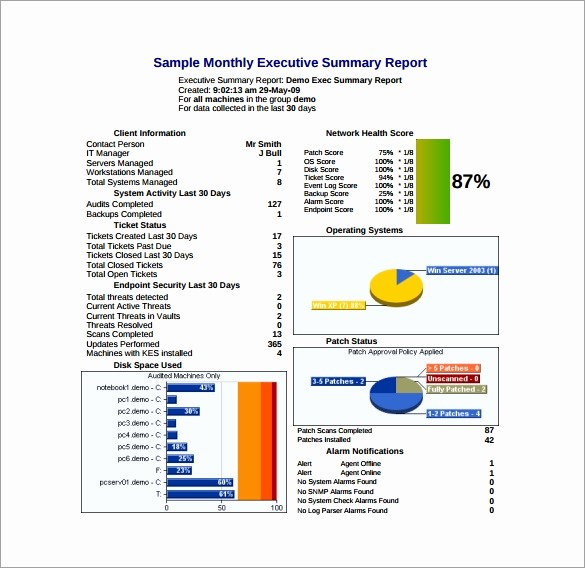 Executive Summary Report Example Template Elegant Executive Report Template 7 Free Word Pdf Documents