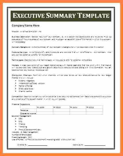 Executive Summary Report Example Template Fresh 7 Executive Summary Report Example Template