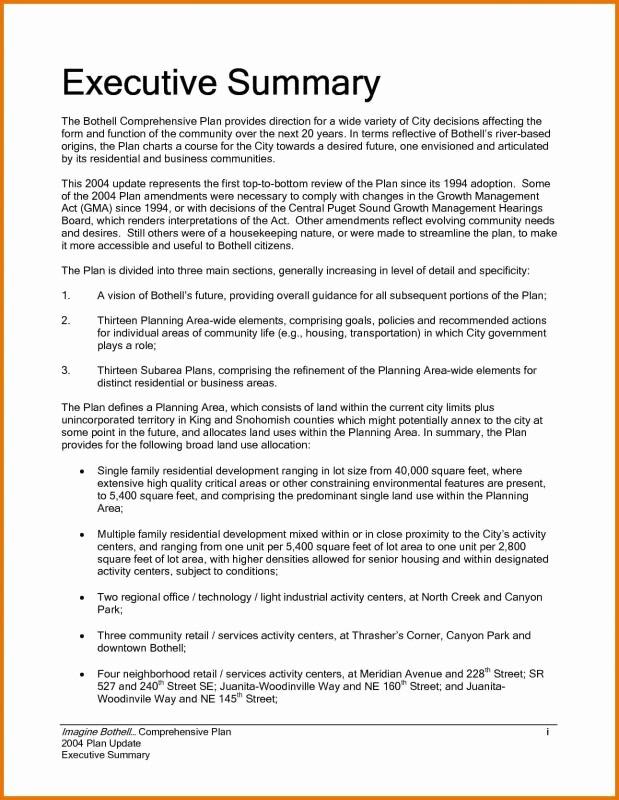 Executive Summary Report Example Template Lovely Executive Summary Sample