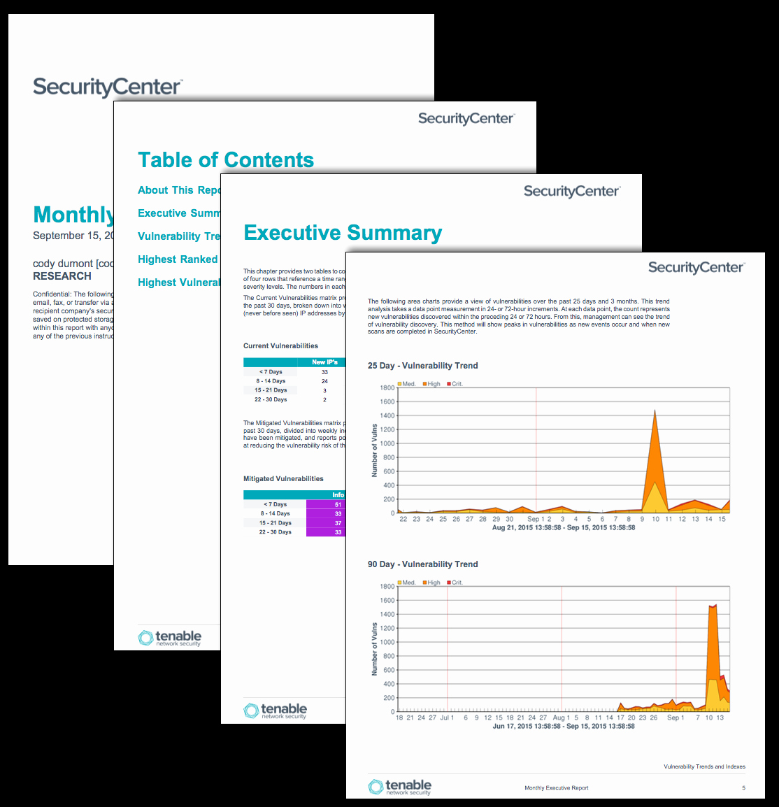 Executive Summary Report Example Template Lovely Monthly Executive Report Sc Report Template
