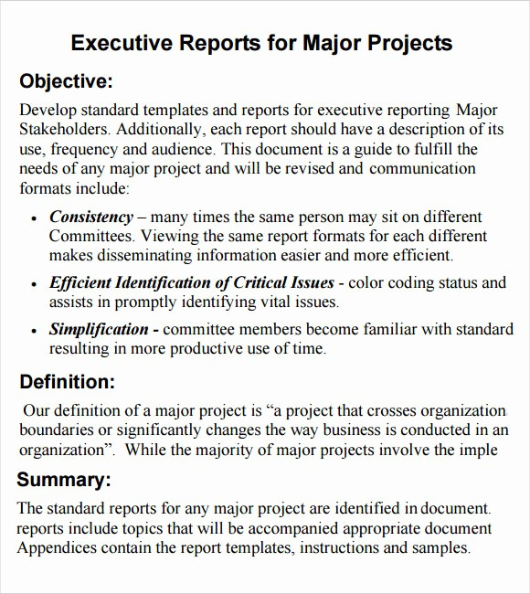 Executive Summary Report Example Template Luxury 6 Sample Executive Reports