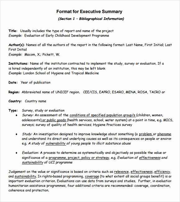 Executive Summary Report Example Template Luxury 9 Executive Summary Templates for Free Download