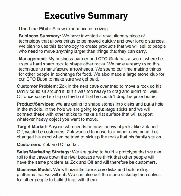 Executive Summary Report Example Template Luxury Executive Report 6 Free Pdf Doc Download