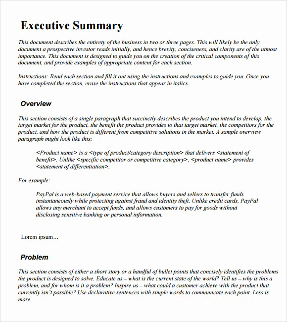 Executive Summary Report Example Template Unique Sample Executive Summary Template 12 Documents In Pdf