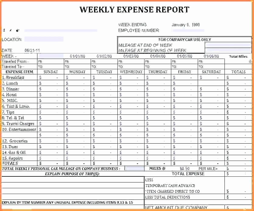 Expense Report Template Excel 2010 Best Of Excel Expense Report Excel Expense Report Excel Report