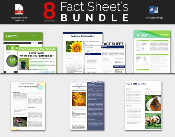 Fact Sheet Templates Microsoft Word Best Of Sample Fact Sheet Template 13 Free Download Documents