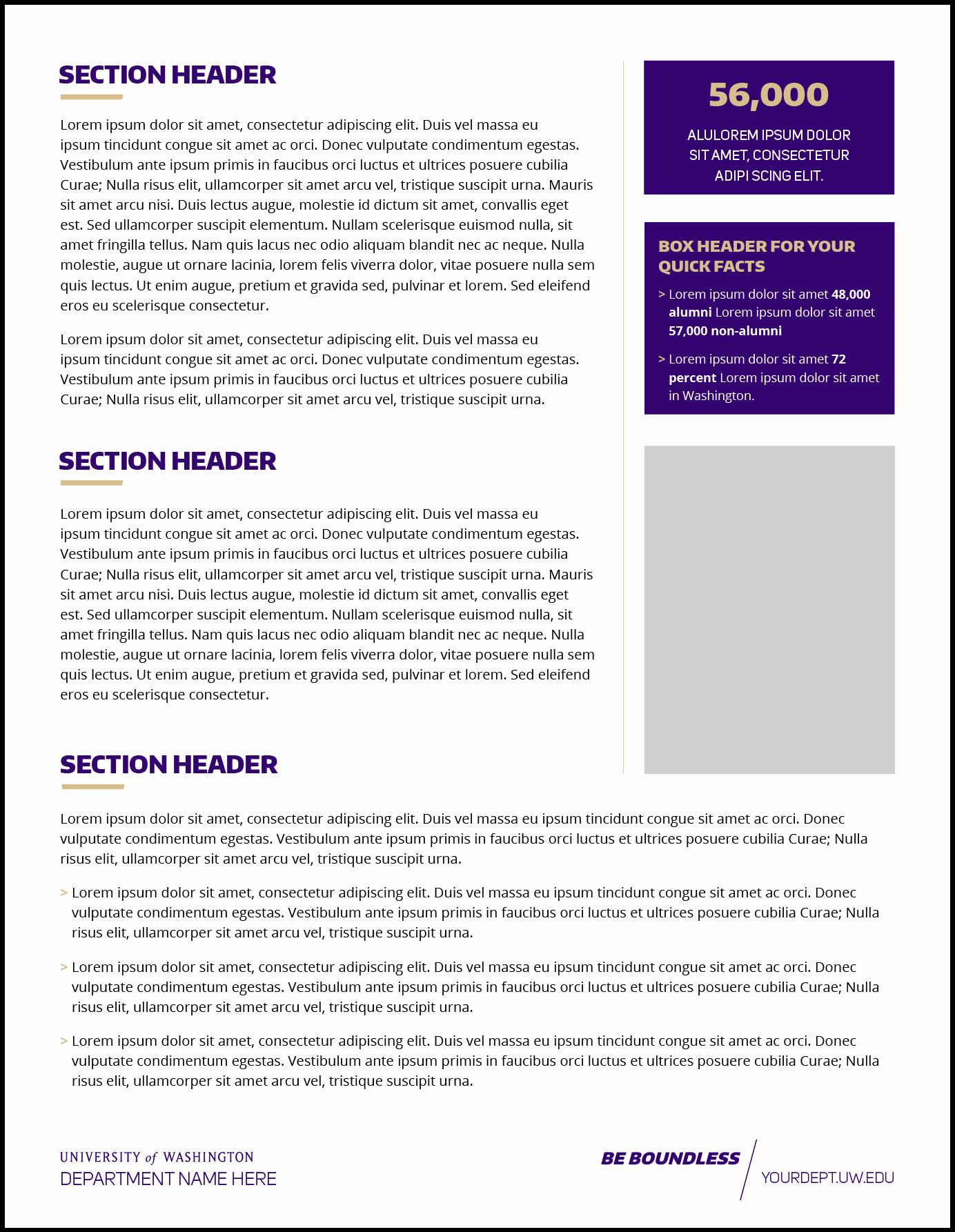 Fact Sheet Templates Microsoft Word Lovely Fact Sheet