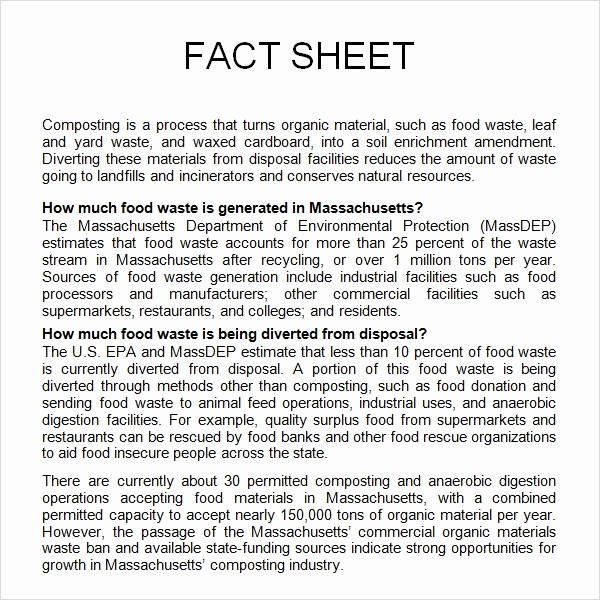 Fact Sheet Templates Microsoft Word Unique 13 Sample Fact Sheet Templates