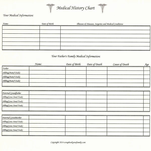 Family Health History form Template Awesome 217 Best Images About Family Tree Charts & forms On