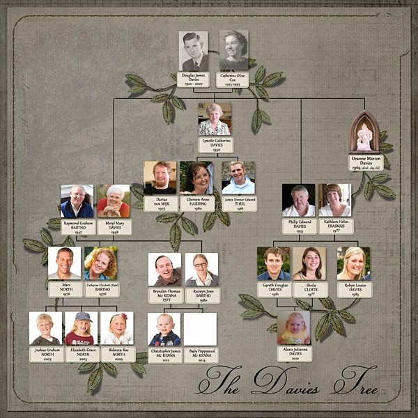 Family History Book Layout Ideas Elegant Davies Family Tree