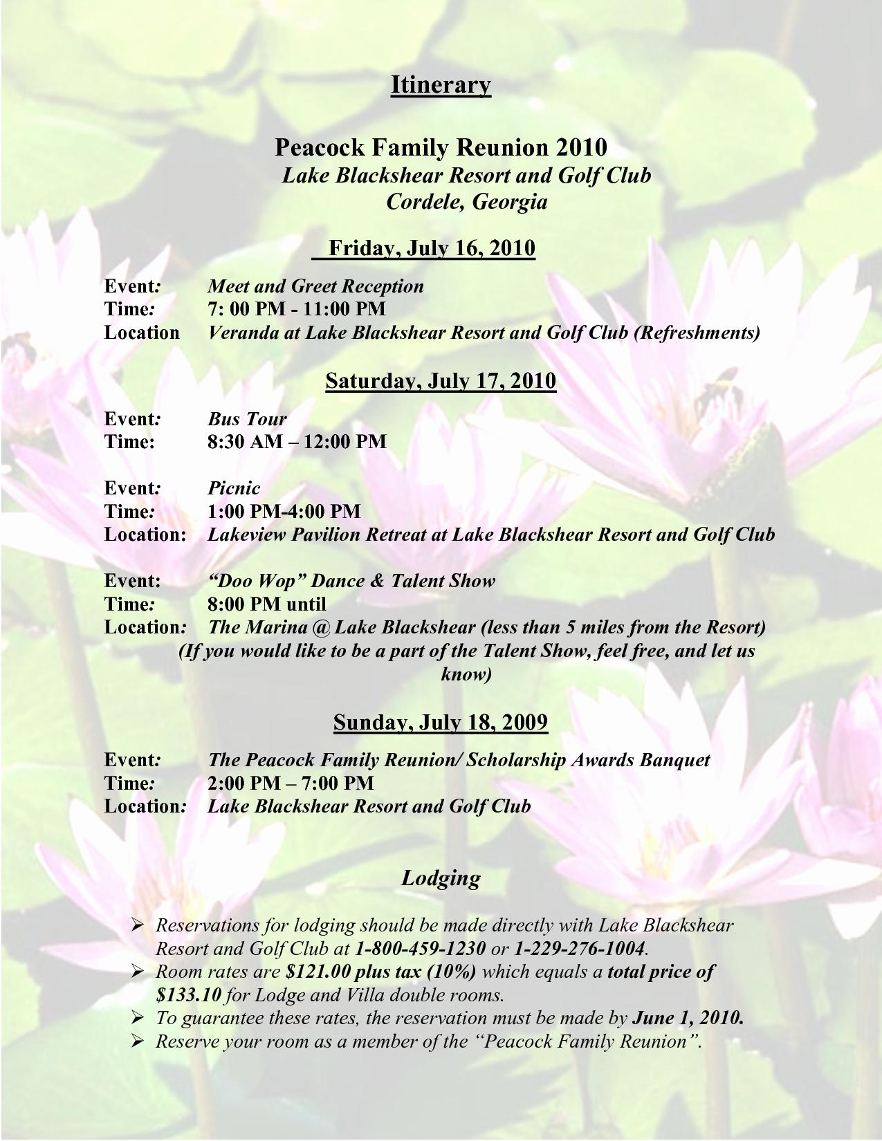 Family Reunion Flyer Templates Free Inspirational Sample Family Reunion Program Templates