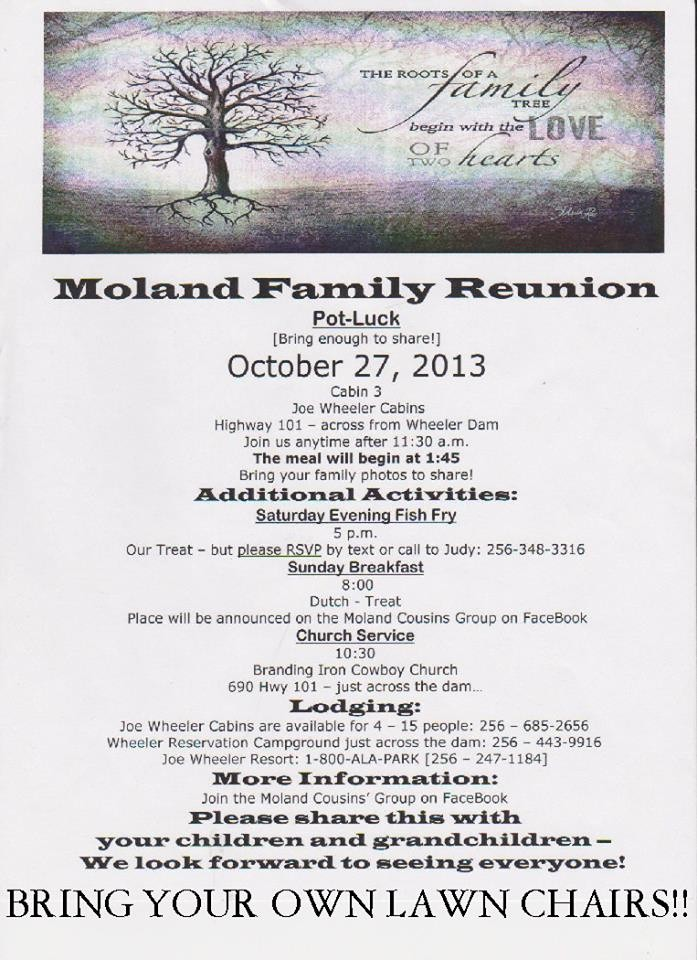 Family Reunion Newsletter Templates Free Beautiful 12 Months In View Hospitality Family Reunion