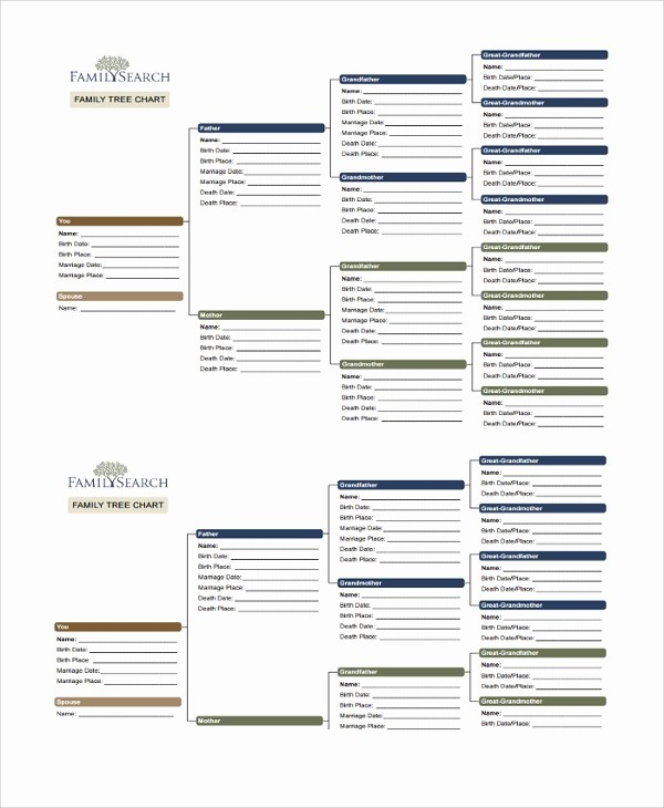 Family Tree Microsoft Word Template Awesome 18 Sample Family Tree Chart Templates