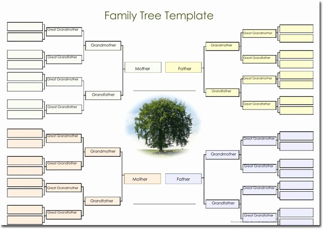 Family Tree Microsoft Word Template Awesome 21 Genogram Templates Easily Create Family Charts