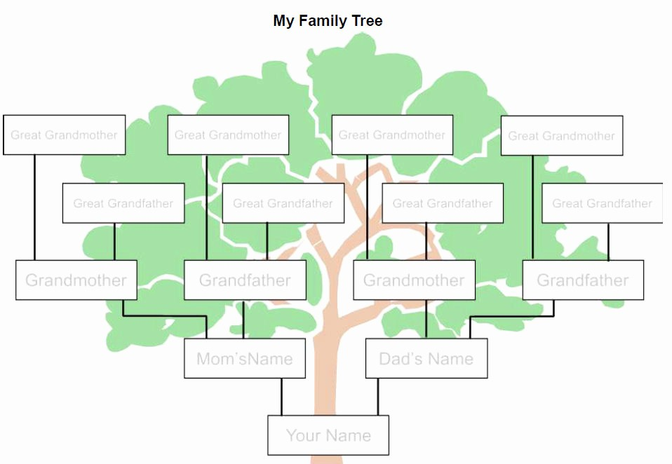 Family Tree Microsoft Word Template Best Of Family Tree Template Word Beepmunk