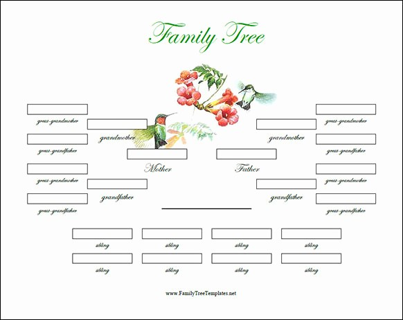 Family Tree Microsoft Word Template Inspirational Family Tree Template 29 Download Free Documents In Pdf