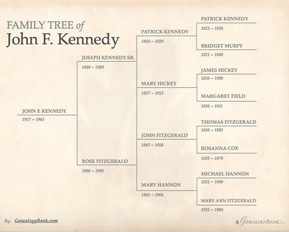 Family Tree Microsoft Word Template Lovely 53 Family Tree Templates