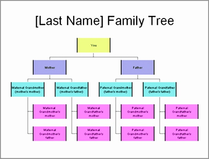 Family Tree Microsoft Word Template Luxury 7 Family Tree Template Microsoft Word 2007 Ietpy