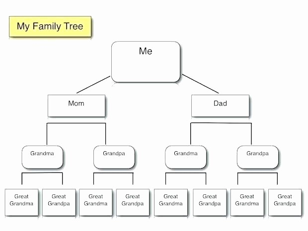 Family Tree Microsoft Word Template Luxury Family History Template Word – Skincense