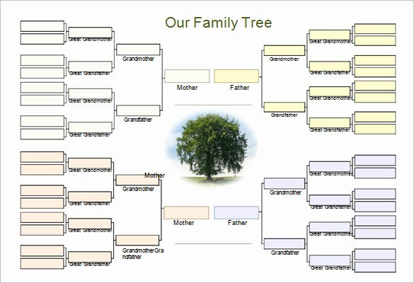 Family Tree Microsoft Word Template Unique Genogram Template Family Tree Word Excel formats