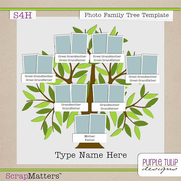 Family Tree Microsoft Word Template Unique Purple Tulip Designs Family Tree Template
