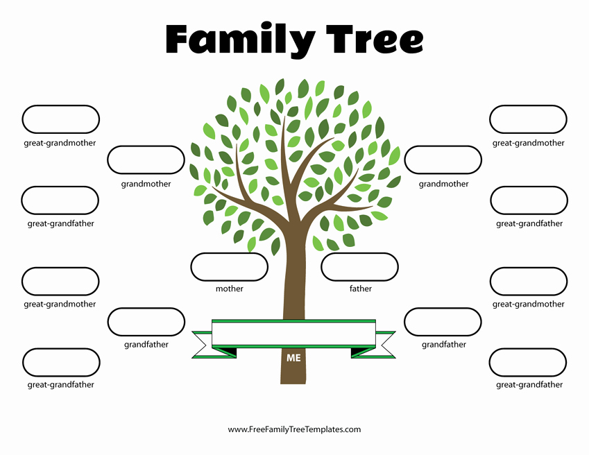 Family Tree Template 5 Generations Beautiful 4 Generation Family Tree Template – Free Family Tree Templates