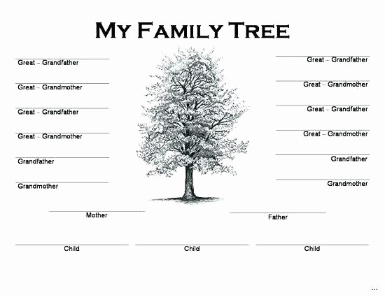 Family Tree Template 5 Generations Elegant 5 Generation Family Tree Chart – Freetruthfo