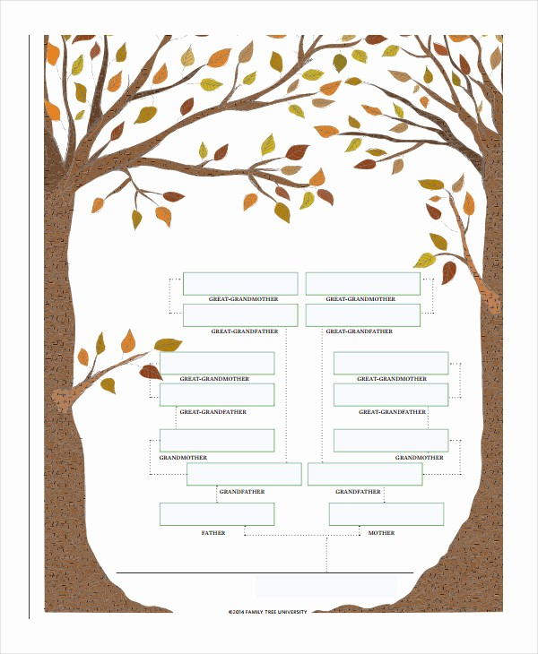 Family Tree Template 5 Generations Fresh 19 Family Tree Templates