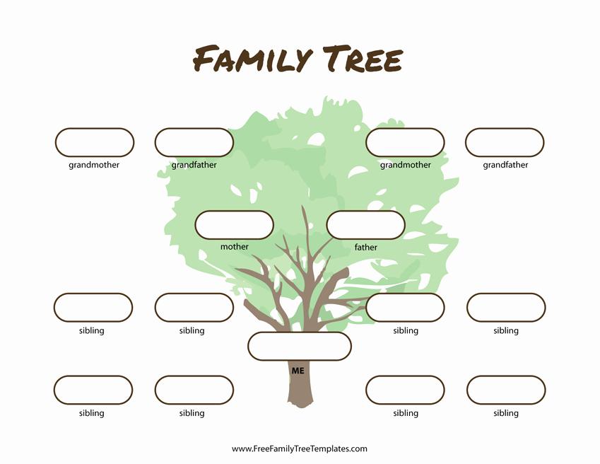 Family Tree Template 5 Generations Fresh 3 Generation Family Tree Many Siblings Template – Free