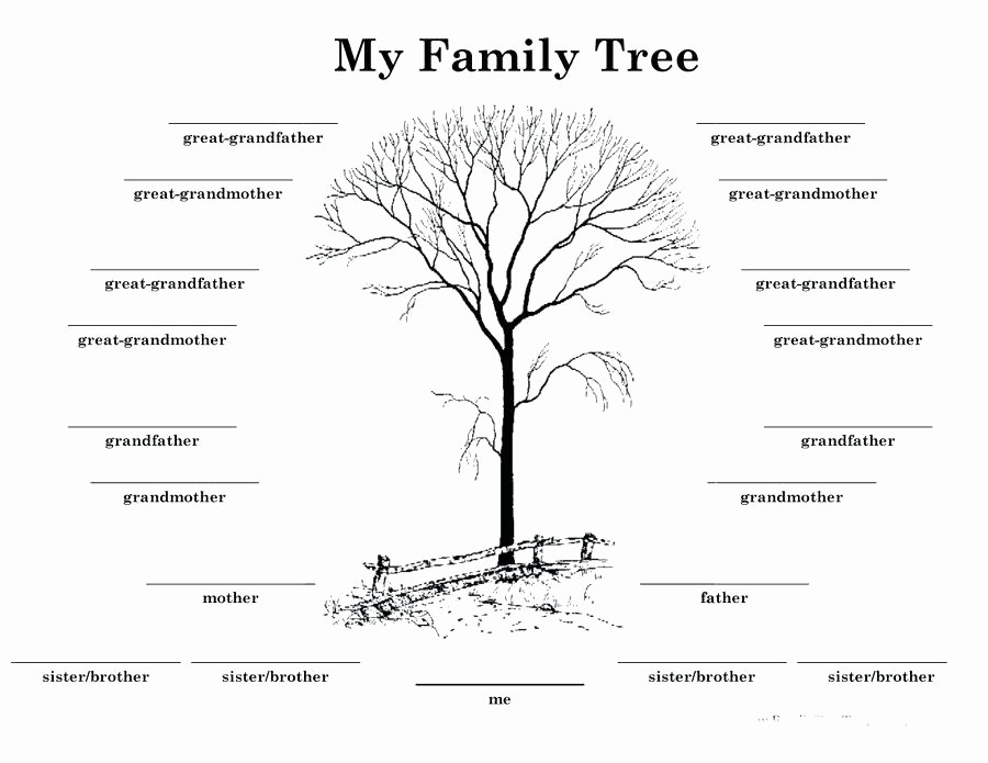 Family Tree Template 5 Generations Lovely Printable Family Tree Template 5 Generations – Midcitywest
