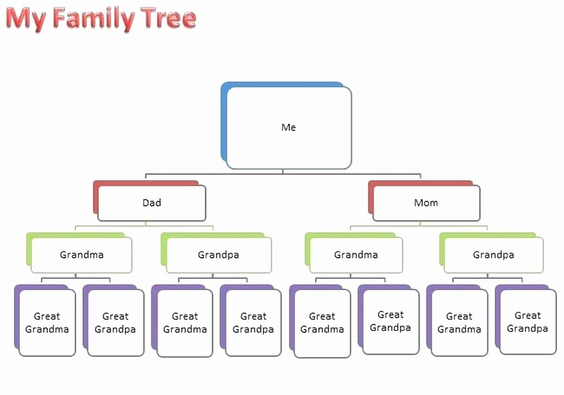 Family Tree Template for Mac Awesome Family Tree Template for Mac Generation Pedigree Chart
